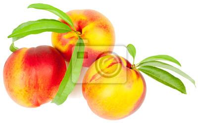 Nálepka Nektarinka ovoce
