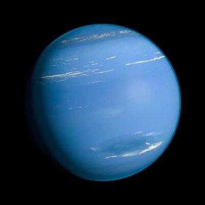 Nálepka Neptune