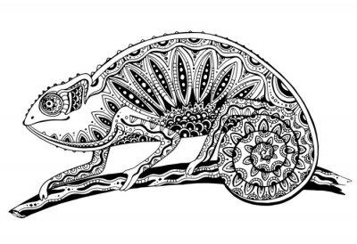 Nálepka obraz černé a bílé chameleon ještěrka v tetování stylu