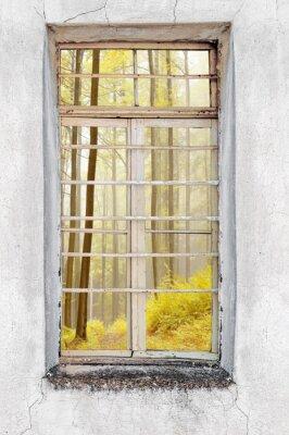 Nálepka Okno starého cementu domu s výhledem na lesní