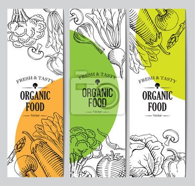 Nálepka organic vegetarian food banner, roll up standee design template, hand drawn illustration template