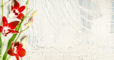 Nálepka Ošumělý chic pozadí s červenými květy orchidejí, při pohledu shora, místo pro text.