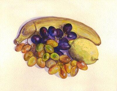 Nálepka Ovoce, hroznové víno, citron, banán. akvarelu