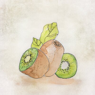 Nálepka Ovoce ilustrace s akvarelem
