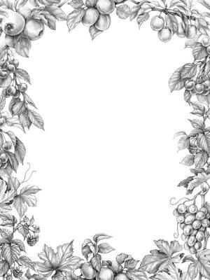 Nálepka Ovoce svislý rám tužkou kreslení