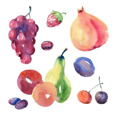 Nálepka ovocné sady akvarel