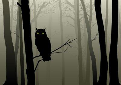 Nálepka Owl In The Misty Woods