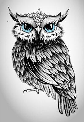 Nálepka Owl Lady - beautiful vector illustration
