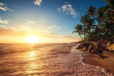 Nálepka Palm trees on the tropical beach