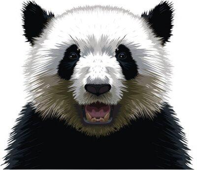 Nálepka PANDA - buste