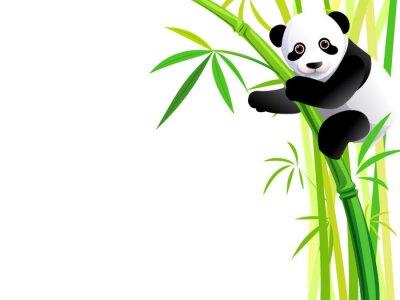 Nálepka panda na bambusu