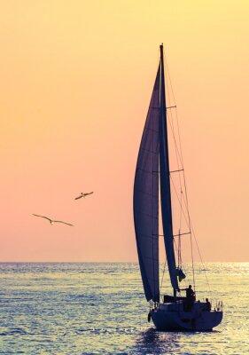 Nálepka panorama plachetnice a dva racek