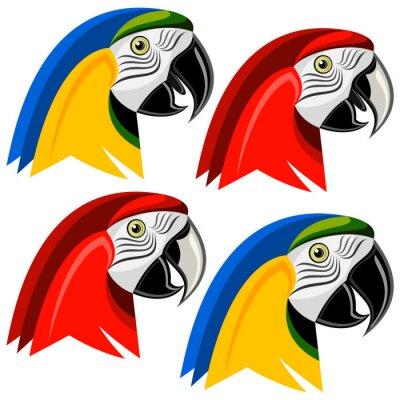Nálepka Papoušek