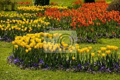 Park tulipánů