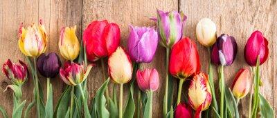 Nálepka pestrobarevné tulipány na dřevěném pozadí, banner, staré desky, jarní květiny, tulipány na deskách