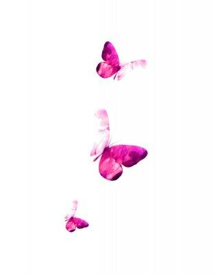 Nálepka Pink flying butterflies in watercolor. Mixed media. Vector illustration