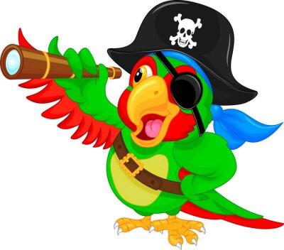 Nálepka pirát papoušek karikatura