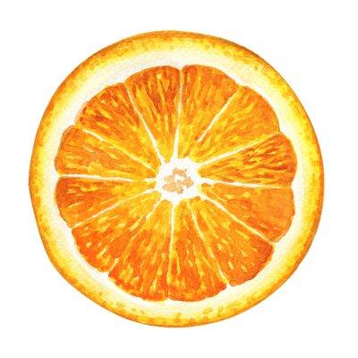 Nálepka Plátek čerstvého pomeranče na bílém pozadí