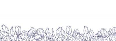 Nálepka Plochá horizontální banner šablona s obrysy tulipánů na bílém pozadí
