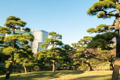 Nálepka Pohled na Tokio panoráma s parkem