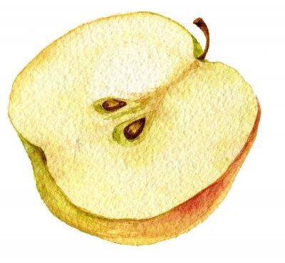 Nálepka Polovina jablko kresba akvarel