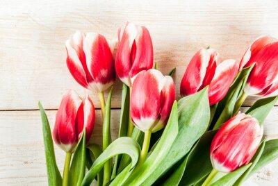 Nálepka Pozadí pro blahopřání, pohlednice. Čerstvé jarní tulipány květiny, na bílé dřevěné pozadí kopie vesmíru