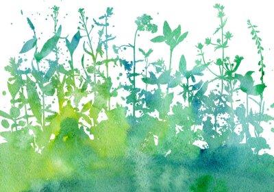 Nálepka Pozadí s nakreslenými bylinkami a květinami