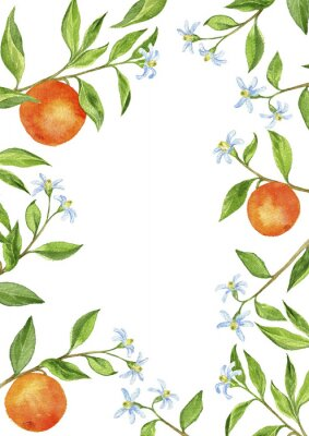Nálepka pozadí s větve ovocných stromů, květiny, listy a pomeranče