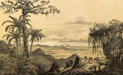 Nálepka Příroda Jižní Ameriky.