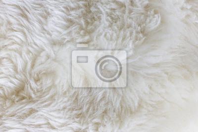 Přírodní textury kůže