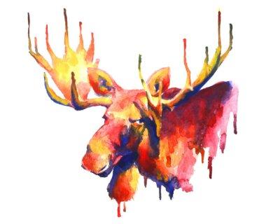 Nálepka Psychedelic jasný akvarel losy kreslení