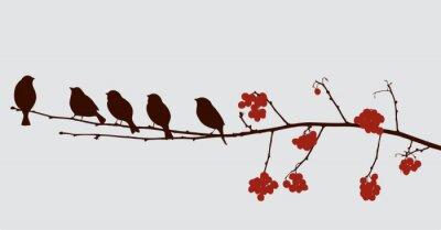 Nálepka ptáci na větvi jeřáb