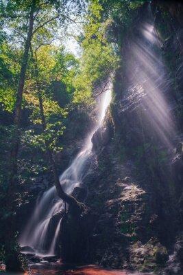 Nálepka Rayos de sol traves de las hojas del Bosque en la Cascada de Hortas, Galicia