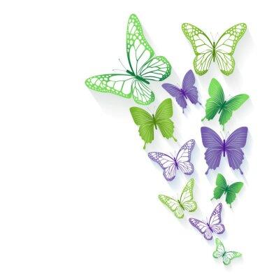 Nálepka Realistické barevné motýli Izolované na jaro