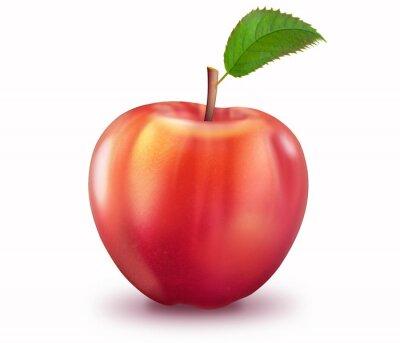 Nálepka Reifer Apfel, freigestellt
