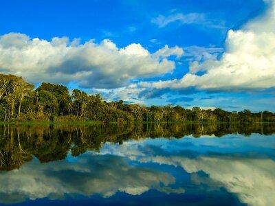 Nálepka Řeka Amazon