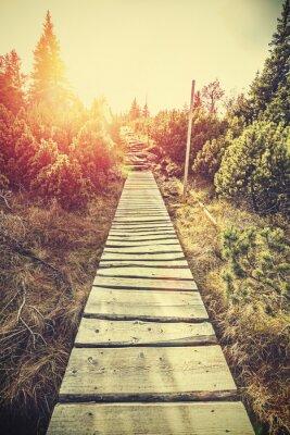 Nálepka Retro stylizované horské dřevěnou cestu v horách při západu slunce.