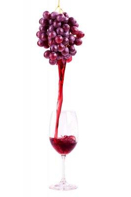 Nálepka Rotwein aus Frischen Trauben