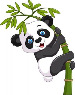 Nálepka Roztomilé vtipné dítě panda visí na bambusové stromě