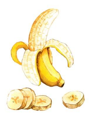 Nálepka Ručně malovaná akvarel ilustrační banánu
