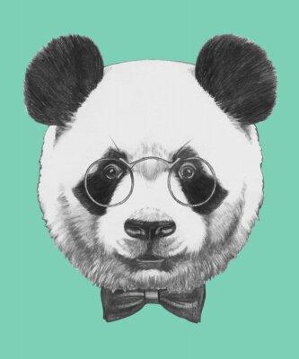 Nálepka Ručně malovaná portrét Panda s brýlemi a motýlka. Vektorové samostatný prvky.