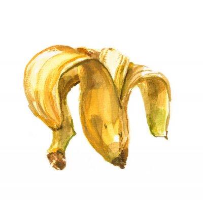 Nálepka Ručně malované akvarel ilustrace banán