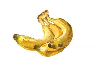 Nálepka Ručně malované akvarel ilustrace banánů