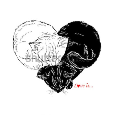 Nálepka Ručně tažené ilustrace černé a bílé koťata spí ve tvaru srdce, Valentin den design, láska