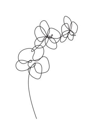Nálepka Ručně tažené květy orchidejí. Černá a bílá vektorové ilustrace