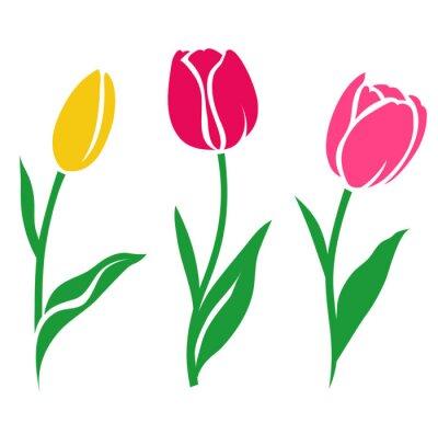 Nálepka Sada barevných tulipánů silueta. Vektorové ilustrace. Sbírka dekorativních květin