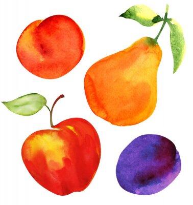 Nálepka Sada ovoce. Jablka, hrušky, švestky a meruňky.