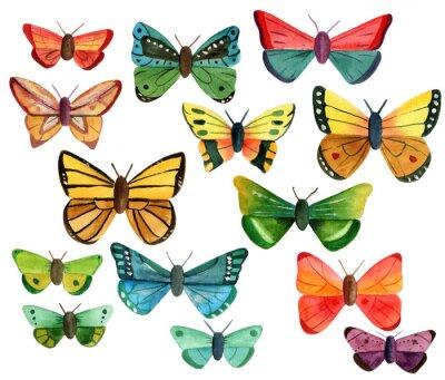 Nálepka Sada různých akvarelových motýlů na bílém pozadí