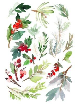 Nálepka Sada vánoční květinové prvky na bílém pozadí