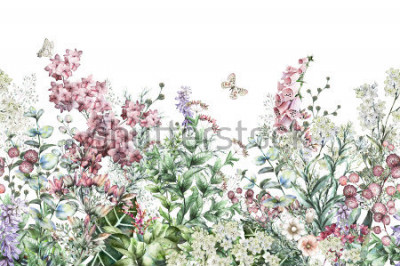 Nálepka seamless rim. Border with Herbs and wild flowers, leaves. Botanical Illustration Colorful illustration on white background. Spring composition with butterfly
